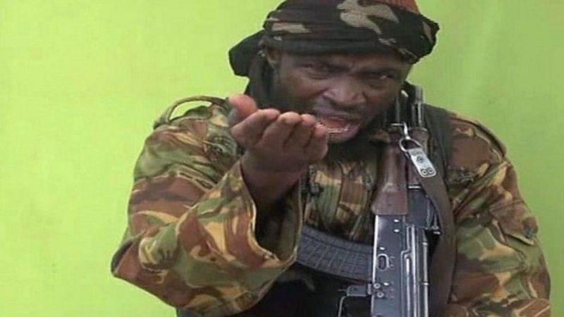 बोको हरामका नेता अबुबकार सेकाउले आफ्नो ज्यान आफैँ लिए